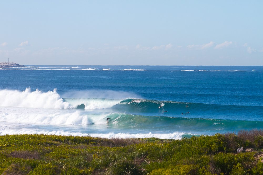 Surfing Cronulla beach