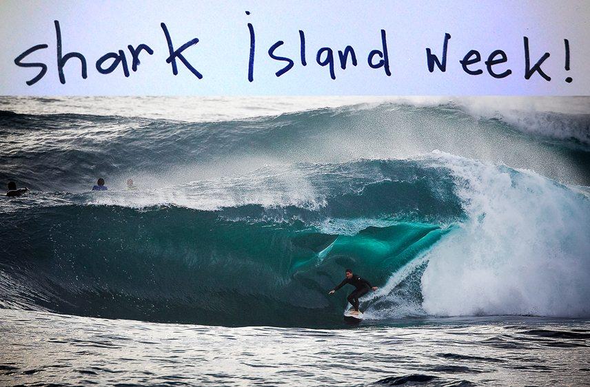 Fletch surfing Shark Island on PCC Surfboard